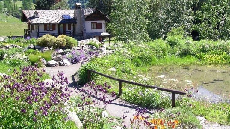 Jard n bot nico alpino paradisia for Jardin botanico tarifas