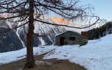 alpeggio storiedelcarré carré animali wildlife valle d'aosta parco nazionale gran paradiso