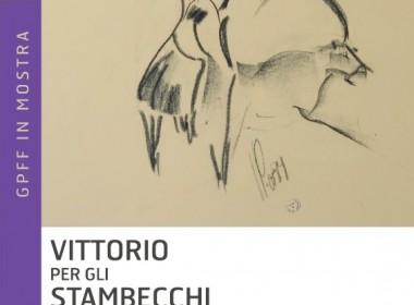 Vittorio per gli stambecchi