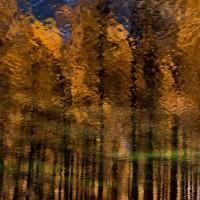 Dans les yeux dans les eaux - Foto di Bruno Maria Miotti