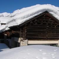 Nevicata Gran Paradiso - Archivio FGP