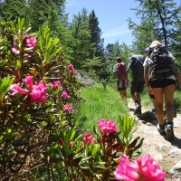 Giroparchi Nature Trail 2016
