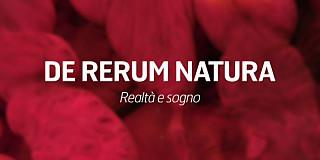 De Rerum Natura Cottarelli Cartabia Cingolani Amato Caroli